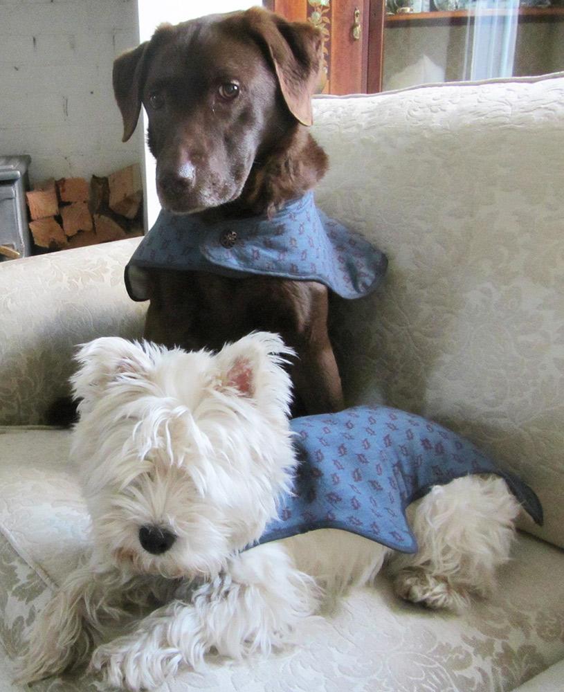 Dog-CoatsWEB