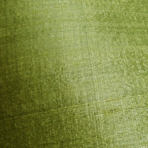 Lime Green Raw Silk 2
