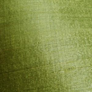 Lime Green Raw Silk 2