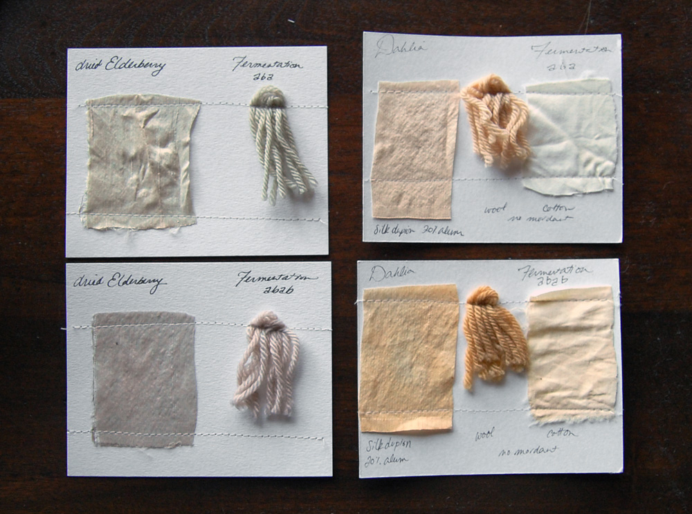 Natural dyeing with Natalie Stopka
