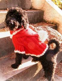 GarnStudio - Dog Santa Suit