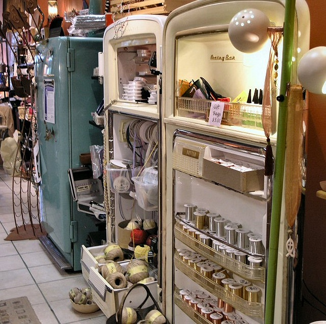 Upcycled Old Refrigerator