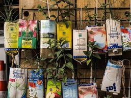 plants packaging