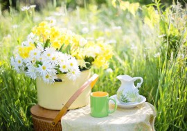Eco-Friendly Ideas For Summer