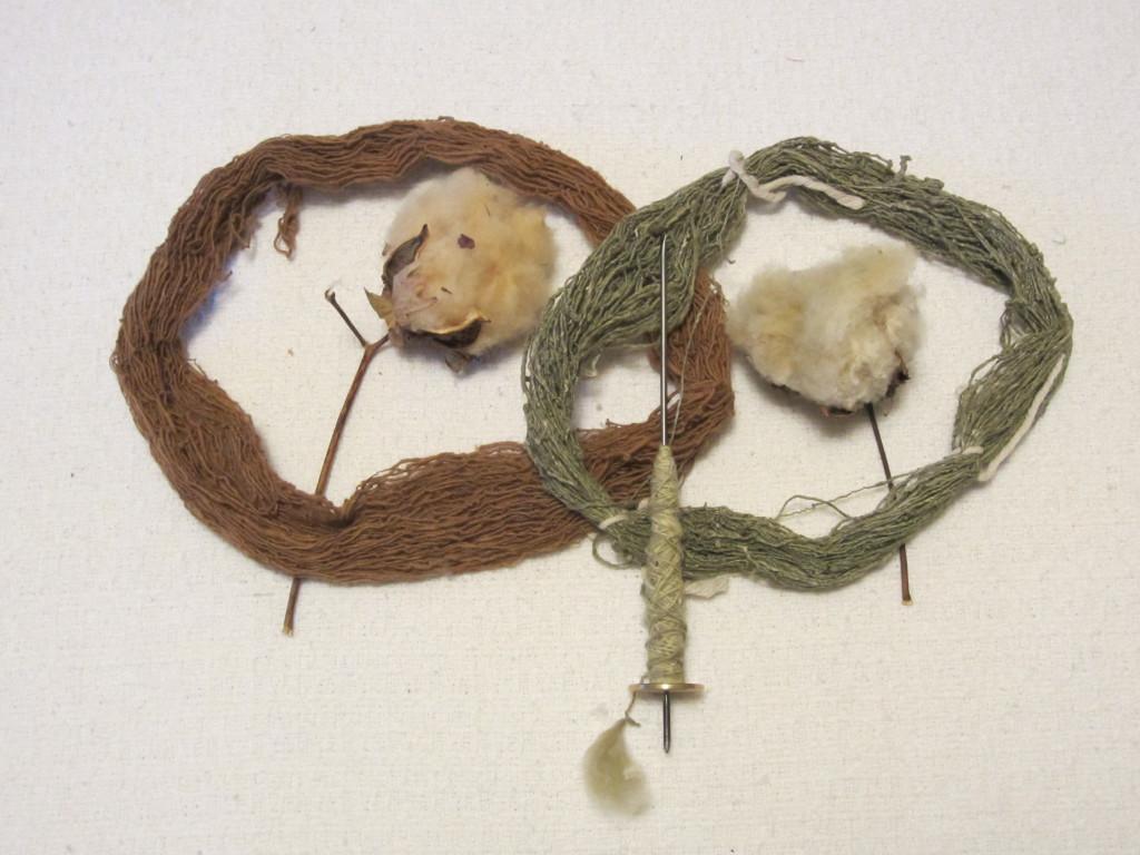 homegrown cotton